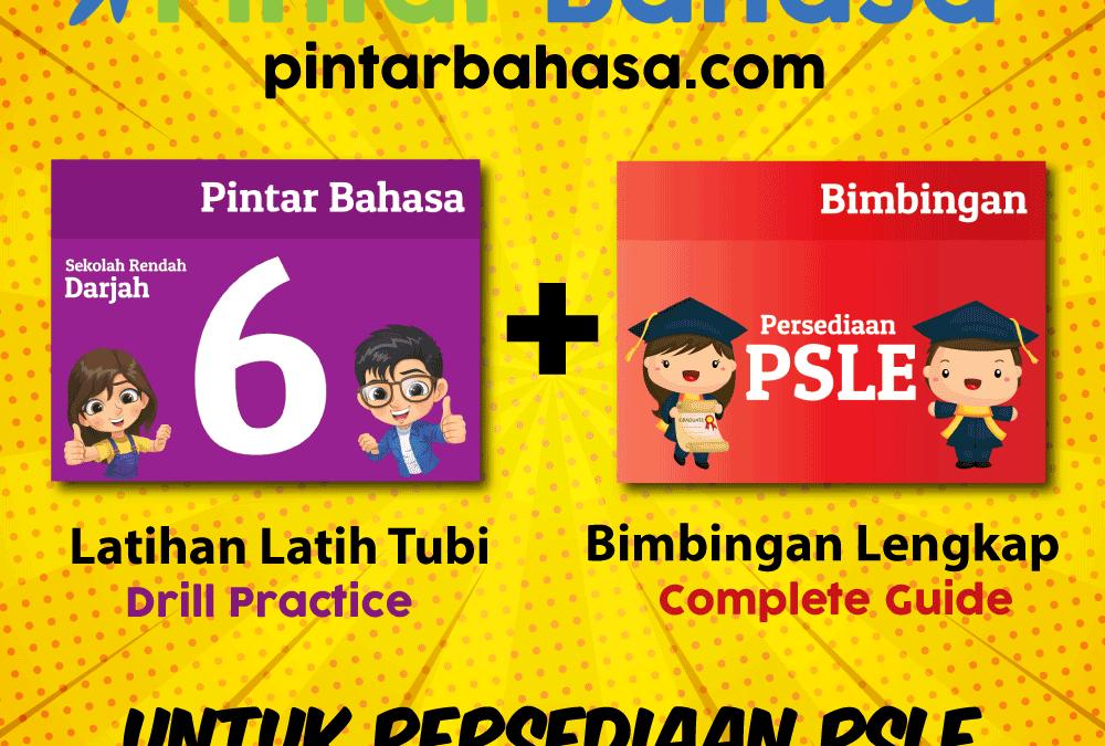 PintarBahasa.com Sudah Dilancarkan!